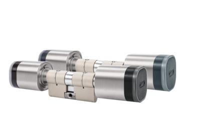 WLX Pro Doppelknaufzylinder Leser Beidseitig