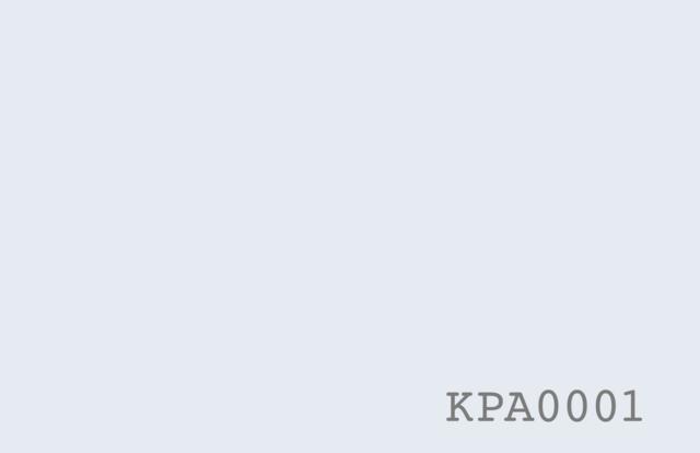 Proximity Karte K-Px-N