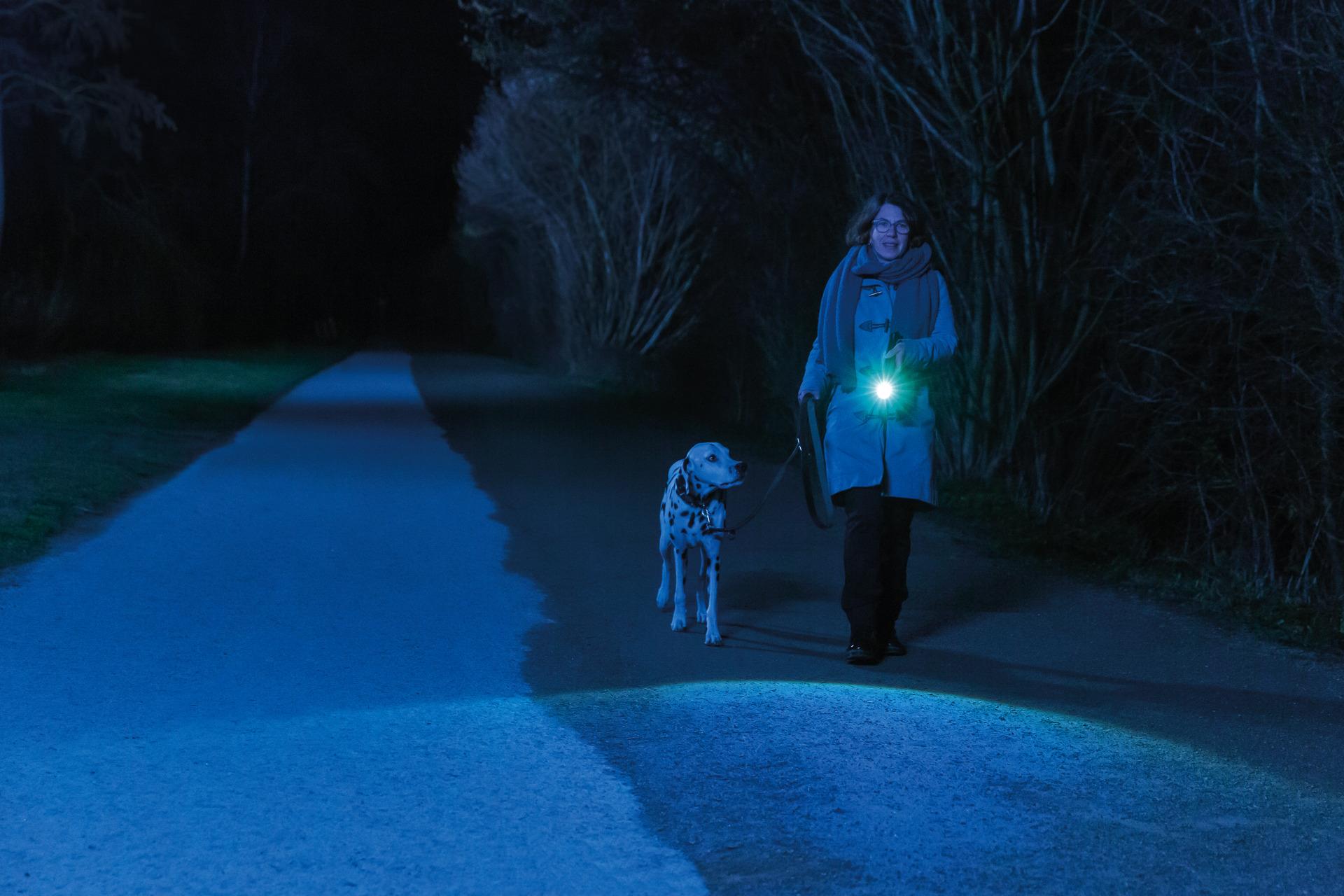Anwendungsbeispiel - Taschenlampe SecLight TL-530