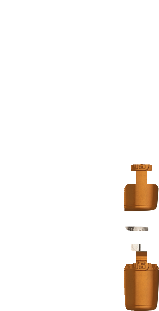 NutFix M5 arancio Axle 100
