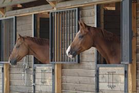Beispiel Pferdepension © iStockphoto.com / horsemen