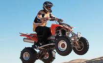 ATV and quad bike locks